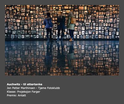 Vår 2015 - Tema: Fritt motiv - Tittel: Auschwitz - Til ettertanke (Jon Petter Marthinsen)