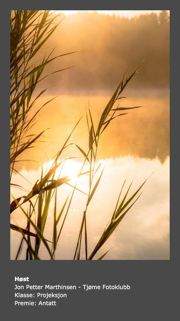 Vår 2015 - Tema: Natur - Tittel: Høst
