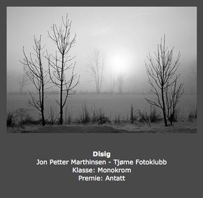 Høst 2013 -Tittel: Disig